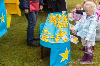 Middleton Country Fair 2015